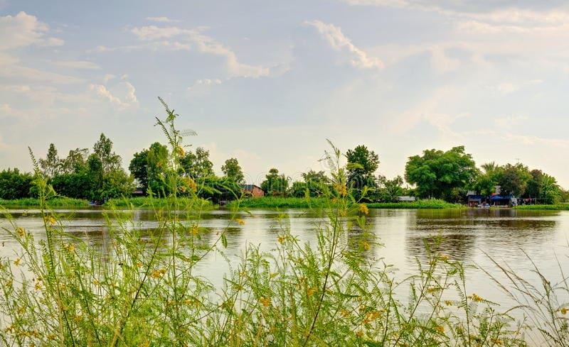 Vam Co Dong River